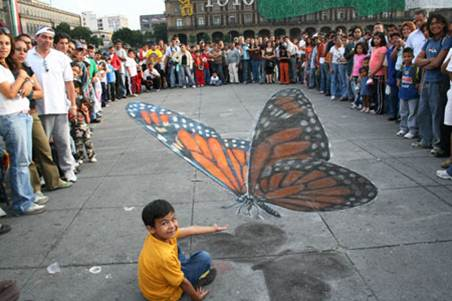 Una mariposa enorme
