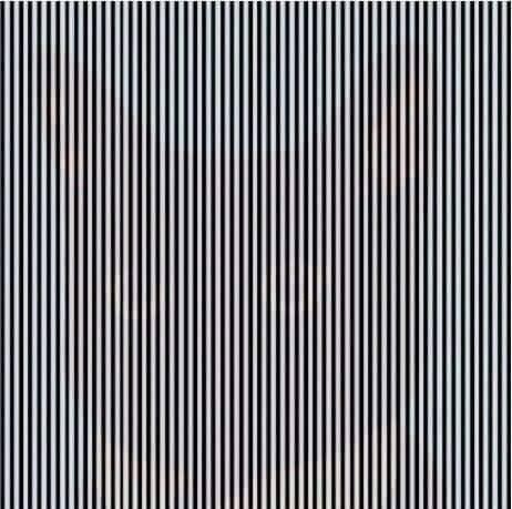 ¿Qué ves al agitar la cabeza?