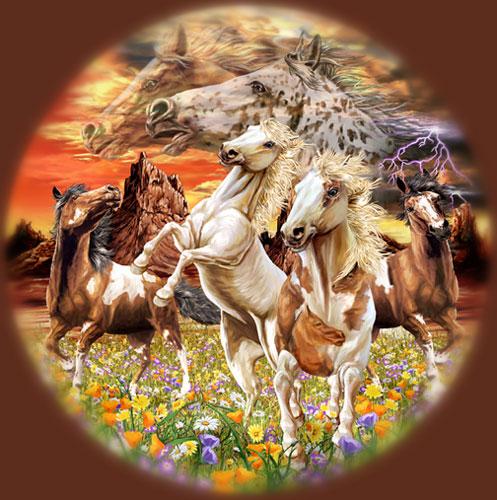Encuentra 14 caballos II
