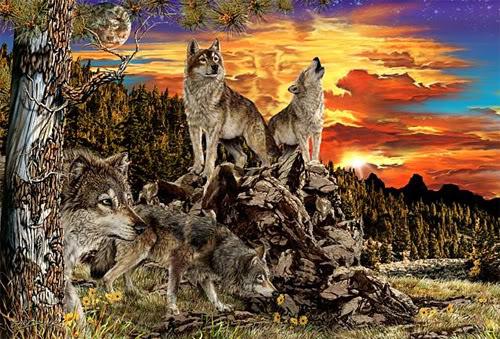 Encuentra 17 lobos