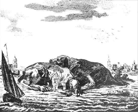 Encuentra los perros en la isla