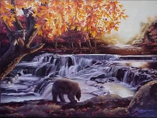 ¿Cuántos osos puedes contar?
