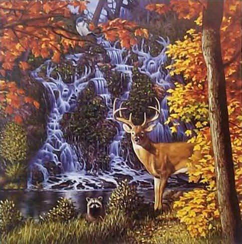 ¿Cuántos ciervos logras ver?
